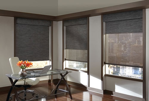 Window Shades with beautiful interior